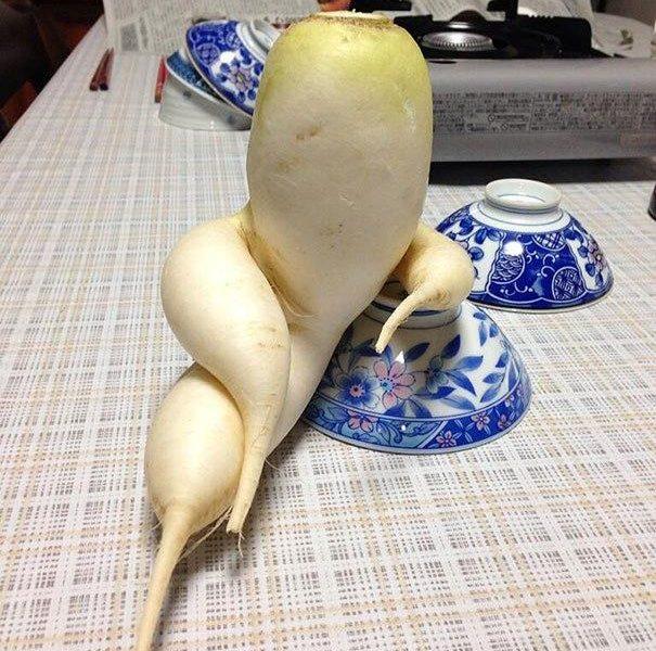 大家都是水果蔬菜,凭什么你能两开花?
