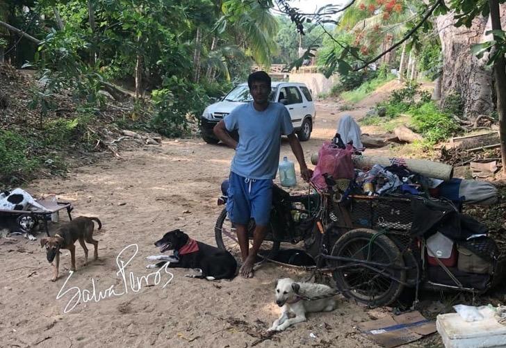 一个中年男人骑着三轮车,沿着海岸线,拯救了五百只被遗弃的狗