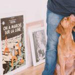狗狗为什么喜欢粘着主人,原因其实并不简单